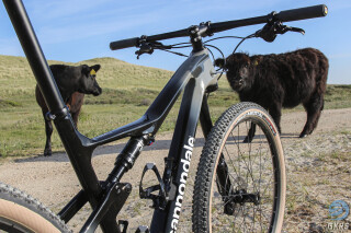 Cannondale Scalpel 2021 Beukers Petten